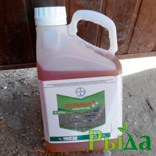falkon-fungicid