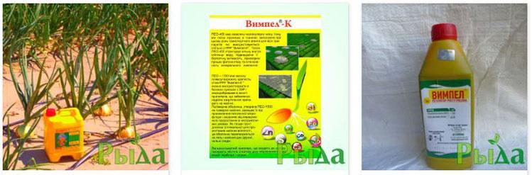 Стимуляторы роста растений (фото)