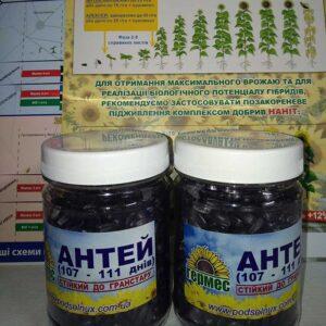 Семена подсолнечника Антей (фото 1)