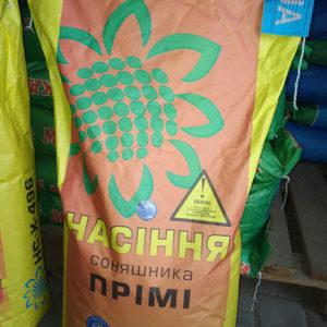 Подсолнечник Прими (фото 1)