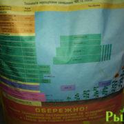 podsolnechnik-primi-foto-3