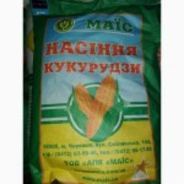 Моника кукуруза