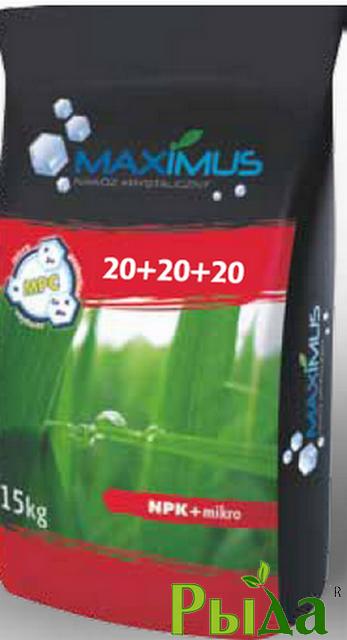Максимус20+20+20+микро